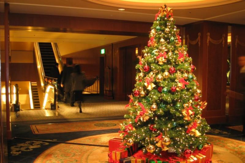 Fundraiser by Abby O'Reilly : Christmas Dreams Come True