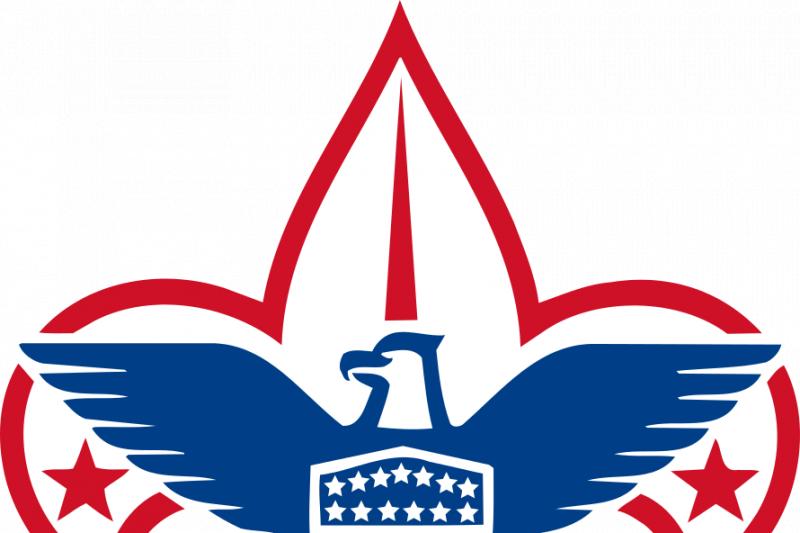 bsa eagle project