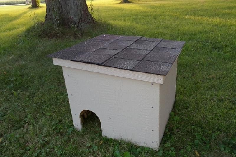 Best outside cat house