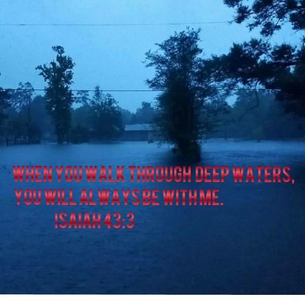 23543968_1504320077.6756_funddescription.jpg