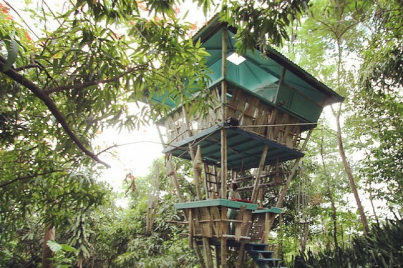 Fundraiser By Jo Scheer Tropical Treehouse Reconstruction