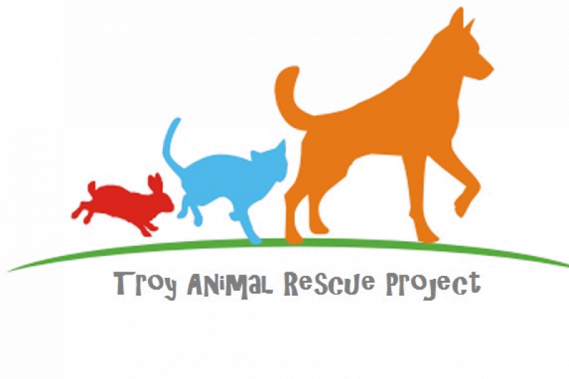 animal rescue project Please join us in making a fundraising video we're making the video to launch a fundraising effort to fix our shelter and repair the roof getting these repairs done will ensure that we can keep our doors open and continue to give a second chance to hundreds of unwanted animals each year.