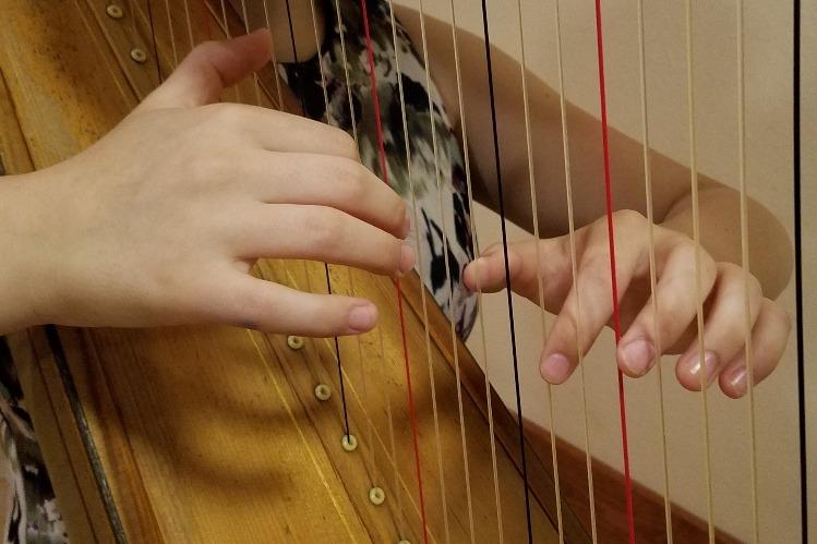 Fundraiser by Rowena Richter : Please Help Me Keep My Harp