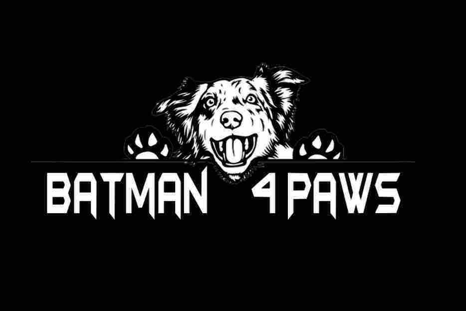 Fundraiser by Chris Van Dorn : Help Batman Rescue Animals!