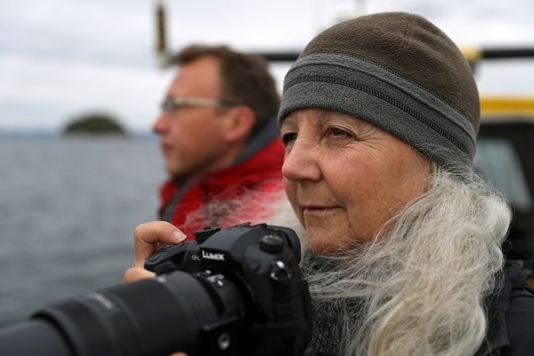 La cagnotte We Are The Orca poru sauver les orques résidentes du Sud