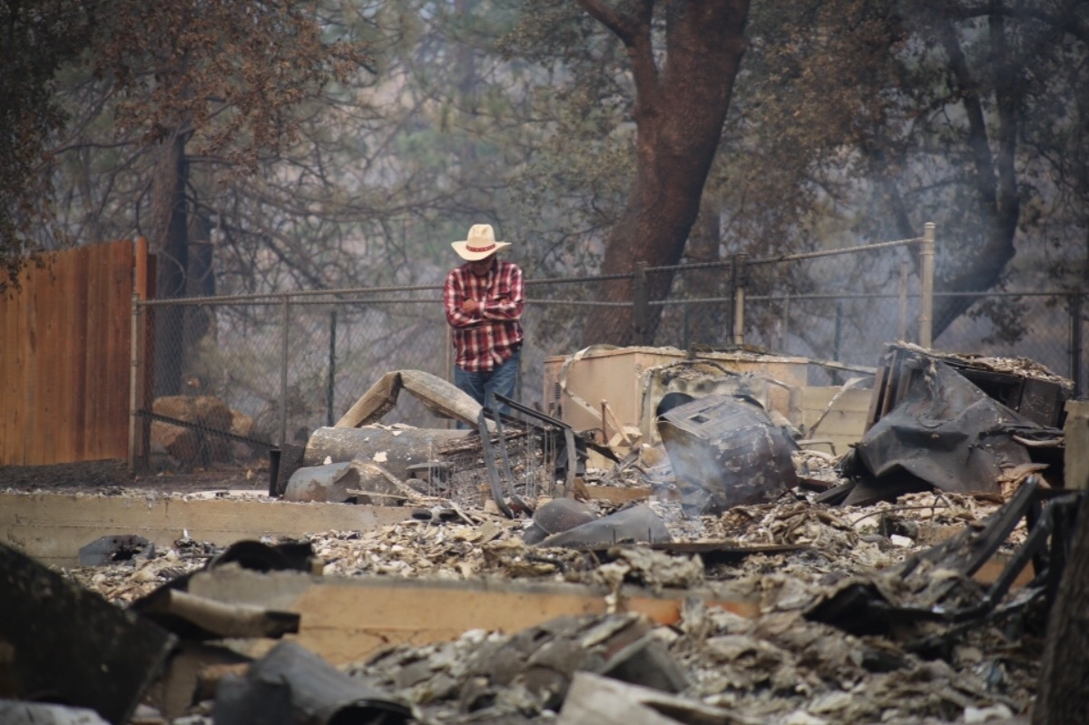 support camp fire victims - HD1200×799