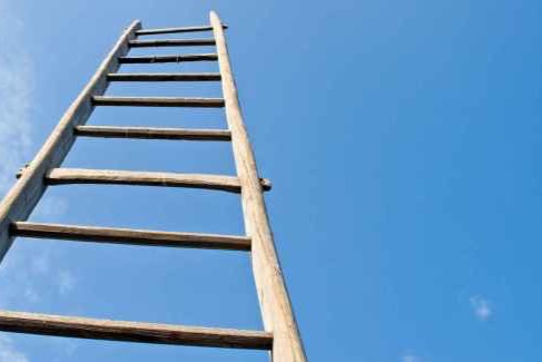 fundraiser by charlotte clymer ladders to get over trump s wall