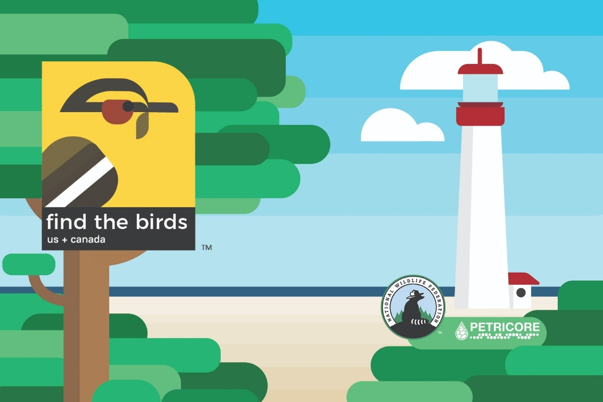 Find the Birds: US + Canada - mobile game