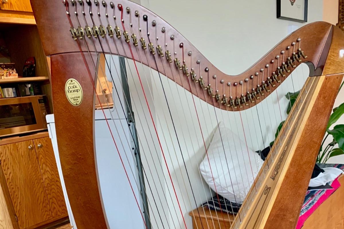 Buy A Harp >> Fundraiser By Joel Benjamin Please Help Me Buy This Harp