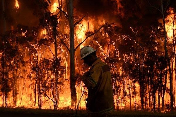 Katastrofalni požar u Australiji - Page 3 44474880_1578043904806359_r