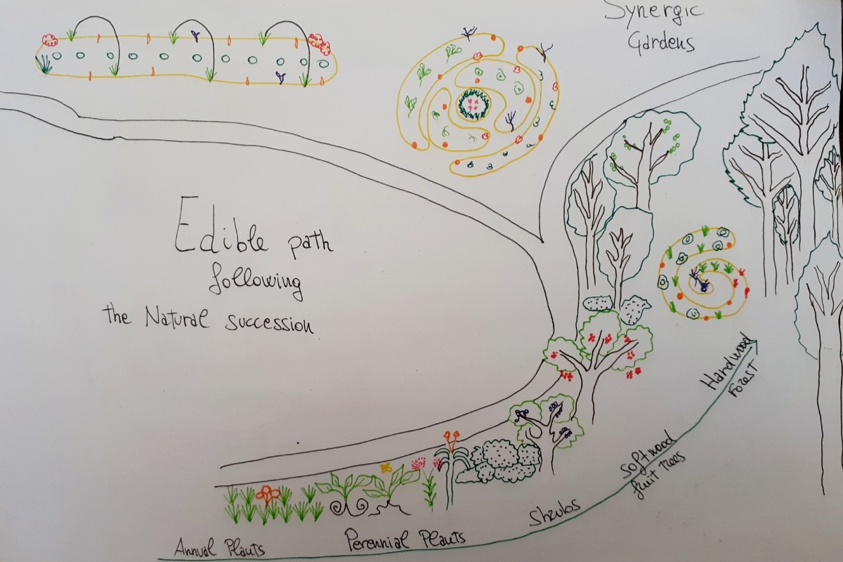 Orti Sinergici Biodiversità