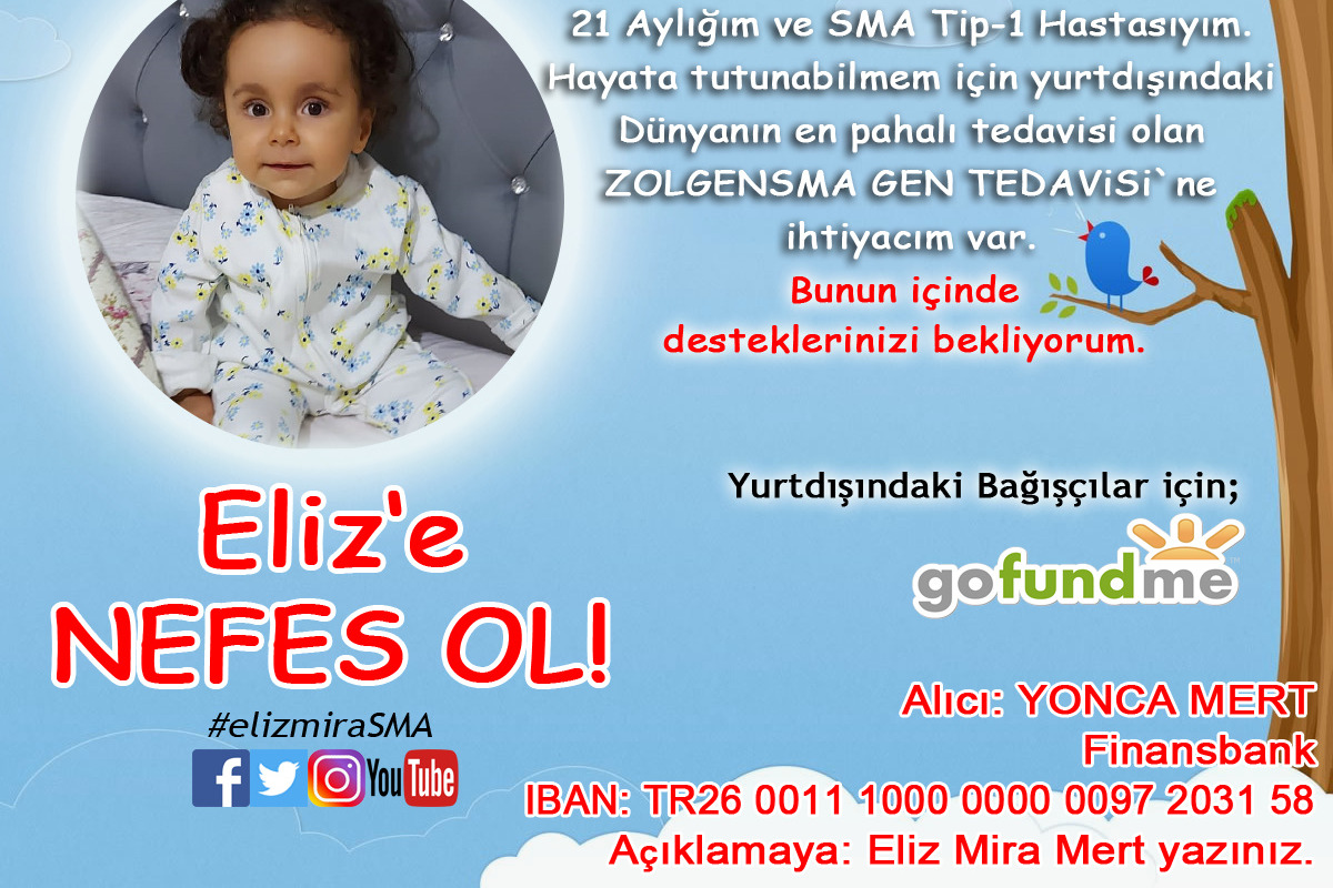 52367424_1605651494208164_r.jpeg